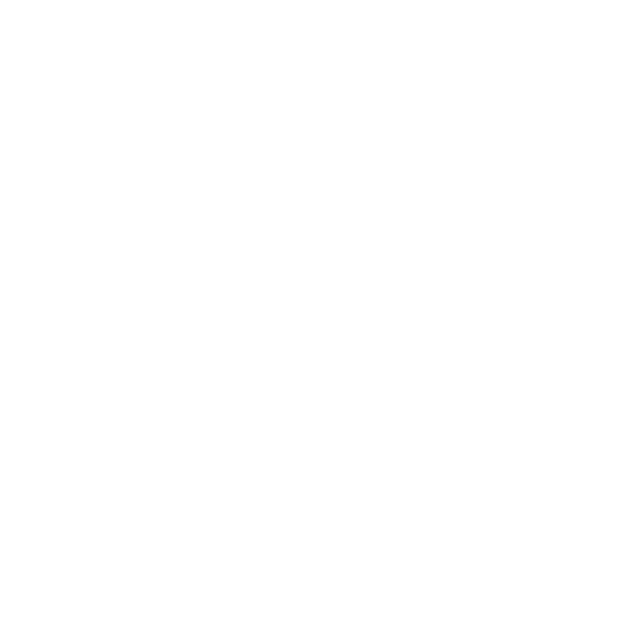 Tuesday Bikes